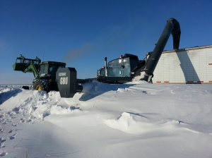Do Farmers Actually Work During The Winter?