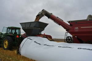 Harvest 069