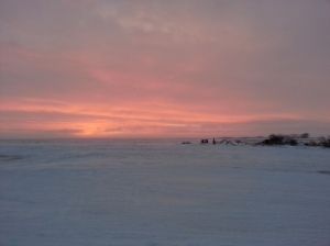 A Cold Sunset 2014