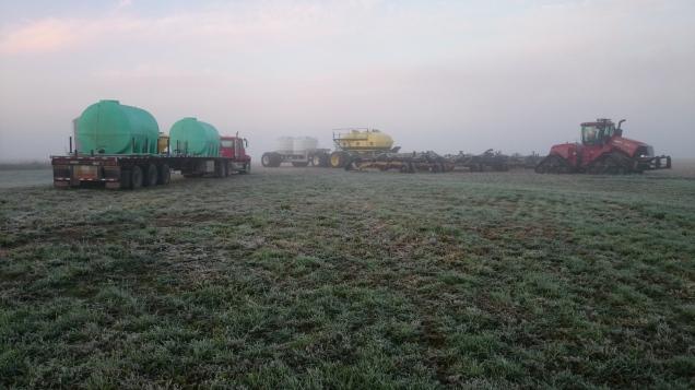 Frosty Morning Seeding