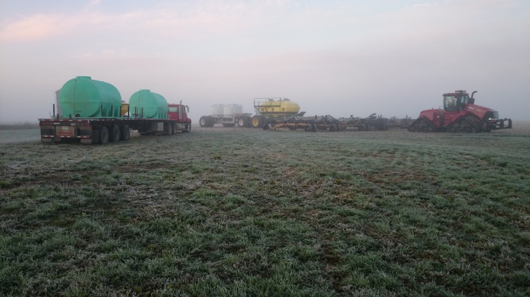 Frosty Morning Seeding