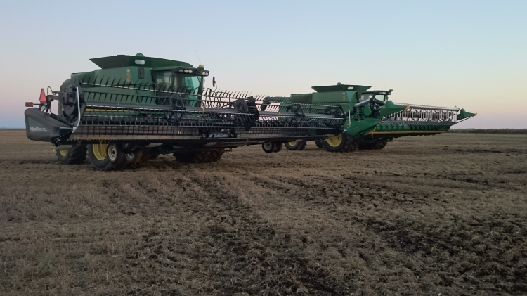 Combing green peas. Special headers are needed for these low crops; featured here is a MacDon Flex Draper on the left, and a John Deere hydraulic flex header with an air reel on the right.