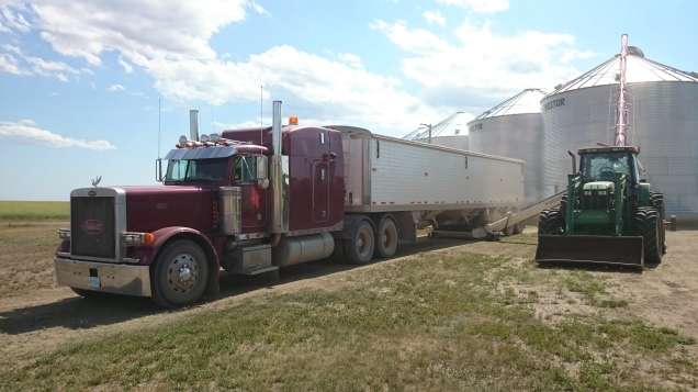 Trucking may not be as glamorous as combining, but it is every bit as important.