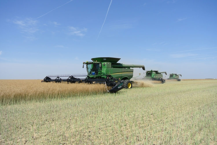 Straight-cutting canola had its challenges, but the pros outweighed the cons.